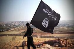 العشائر توجه رسالة لبغداد وأربيل: انتماءات جديدة لداعش ومناطقنا تواجه خطراً محدقاً