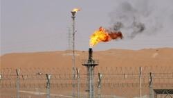 العراق ونيجيريا يقوضان جهود أوبك لدعم أسعار النفط