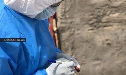 17 إصابة جديدة بفيروس كورونا في البصرة