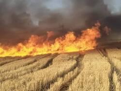 حرائق تلتهم عشرات الدونمات بمنطقة في اقليم كوردستان