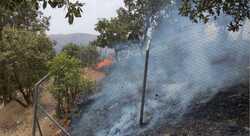 صور .. حرائق تلتهم أكثر من 500 دونم في السليمانية