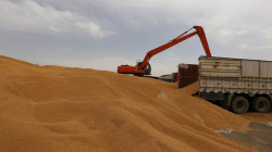 KRG to buy surplus wheat from farmers