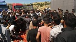 صور .. فلاحون بكوردستان يلقون بضاعتهم بالشارع احتجاجا على تدفقها من إيران