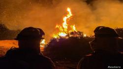 California wildfires scorch 8,000 sq. km