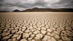 تحذير من خطر يهدد الأرض أكبر من كورونا
