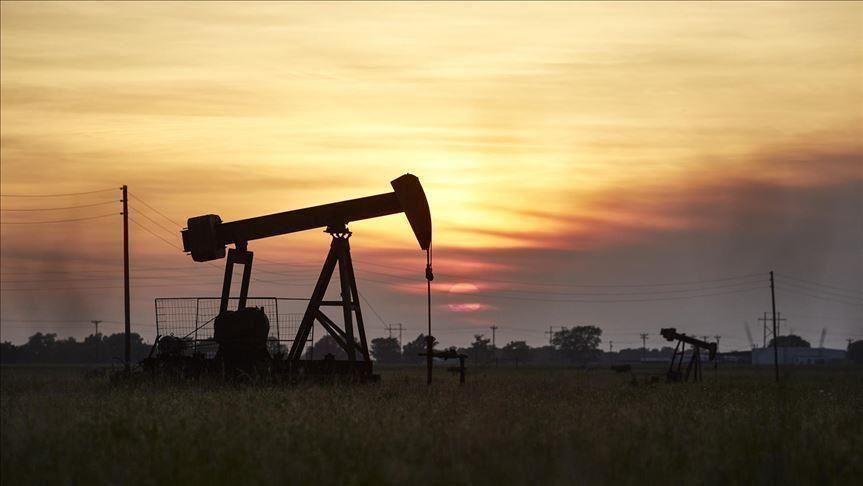 أوبك + تستأنف محادثات السياسة النفطية لعام 2021 وسط خلافات