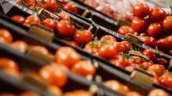 البصرة.. خسائر فادحة بمحصول الطماطم المحلي تؤدي إلى مأساة عائلية