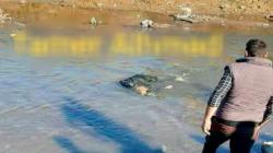 """العثور على جثة أحد مقاتلي """"قسد"""" بمياه نهر في القامشلي"""
