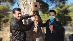 بالصور.. دهوك تبني أعشاشاً لحماية الطيور البرية من البرد والثلوج