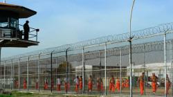 احصائية باحكام الإعدام المنفذة في سجن الحوت جنوبي العراق