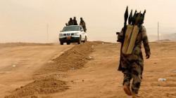 """داعش لم يهزم.. عناصر """"العرض والطلب"""" في منع قيامته مجددا"""