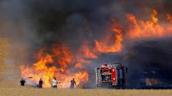 بابل .. حريق كبير يلتهم أراضي زراعية ويتسبب بسقوط خطوط الضغط العالي للطاقة