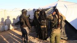 """""""قسد"""" تنهي عملياتها في القطّاع الأول من مخيم الهول باعتقال 23 داعشياً"""