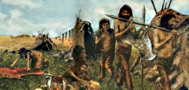 """دراسة حديثة: """"سلاح سري"""" أنقذ البشر قبل 40 مليون سنة"""