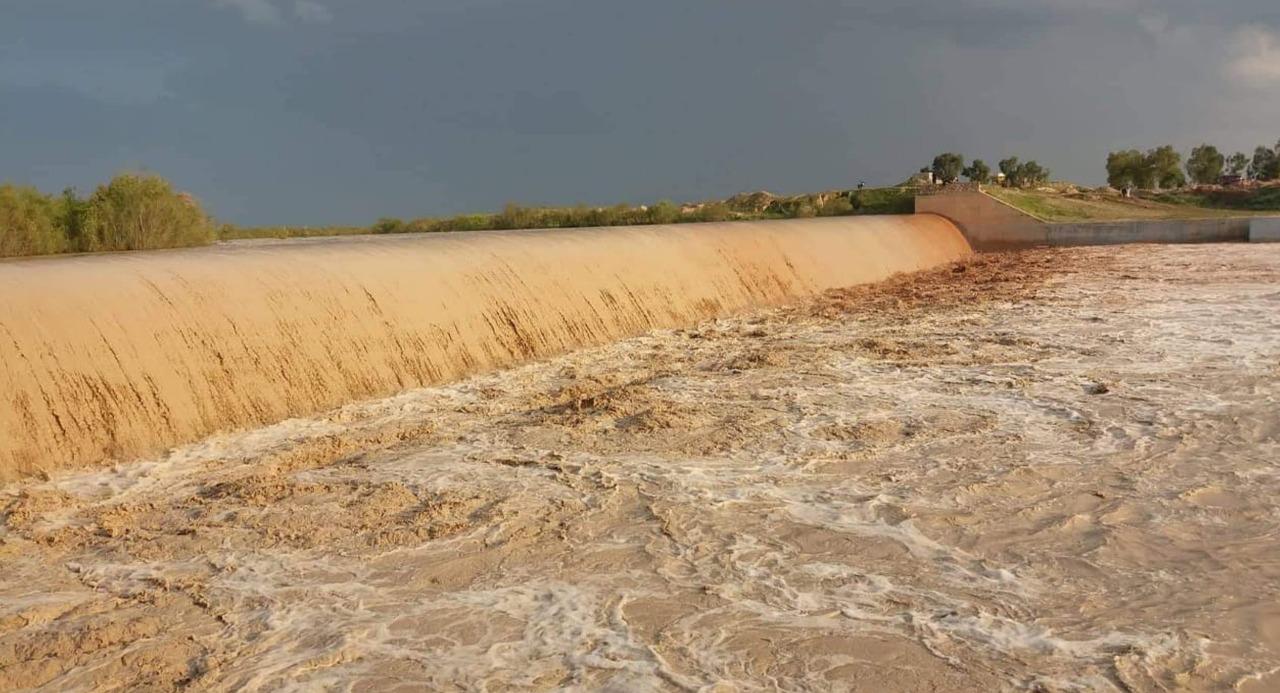نائبة تنتقد وزارة الموارد المائية: حرمت ديالى من خزين مائي لثلاث سنوات