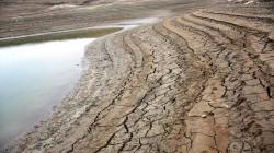 متأثرا بالتخفيض التركي.. الزراعة النيابية تحذر من انخفاض مناسيب مياه الفرات في العراق