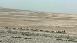 ديالى.. بلدتان تواجهان خطر الجفاف وتلجآن للآبار