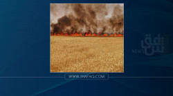 Blazes swept 65 dunums of wheat fields in two Iraqi governorates