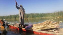 An NGO warns of an environmental disaster in Dhi Qar