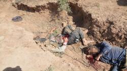 خلال أسبوع.. الإعلام الأمني: قتل واعتقال 88 إرهابياً بمناطق متفرقة