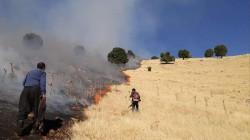 """صور .. حريق """"كبير"""" يلتهم 300 دونم في السليمانية"""