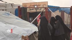 """تحذير من نقل أُسر """"داعشية"""" من مخيم الهول الى الموصل خلال أيام"""