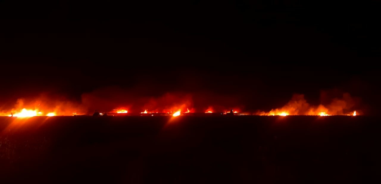 Firefighters curbed the expansion of flames to +200 Dunums of wheat fields in eastern Saladin