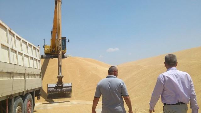 وزير الزراعة العراقي يؤكد تحقيق الاكتفاء الذاتي للحنطة ويحصي عدد النخيل