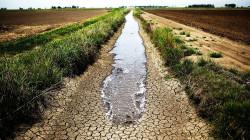 منطقة بكوردستان تتجه للري الحديث والآبار لمواجهة أصعب أزمة جفاف