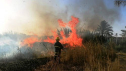 Fire destroys more than 75 dunums of orchards in Diyala
