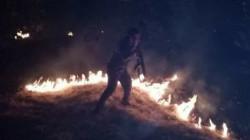 حريق كبير يقضى على 1000 شجرة في السليمانية