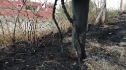 حريقان يطالان مجمعاً حكومياً ومنازل لموظفين في محافظتين جنوبي العراق