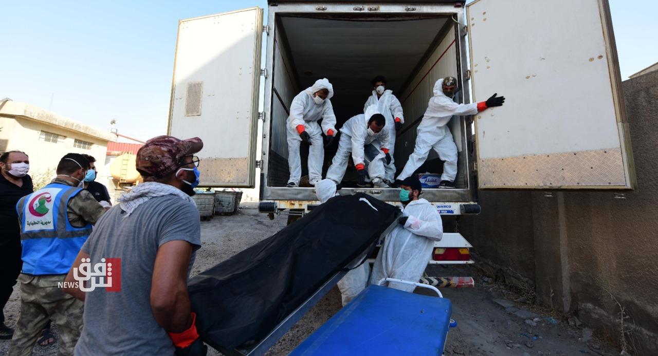 وفاة 81 مريضاً بفيروس كورونا خلال 24 ساعة في العراق
