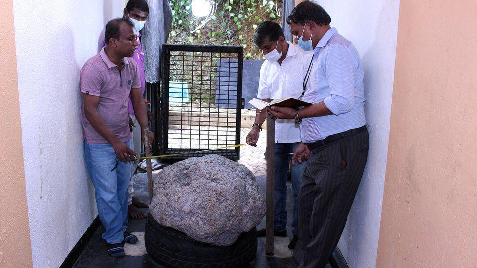 عن طريق الصدفة.. العثور على حجر نادر بقيمة 100 مليون دولار