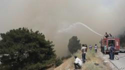 حريق لبنان يتوسع داخل الحدود السورية