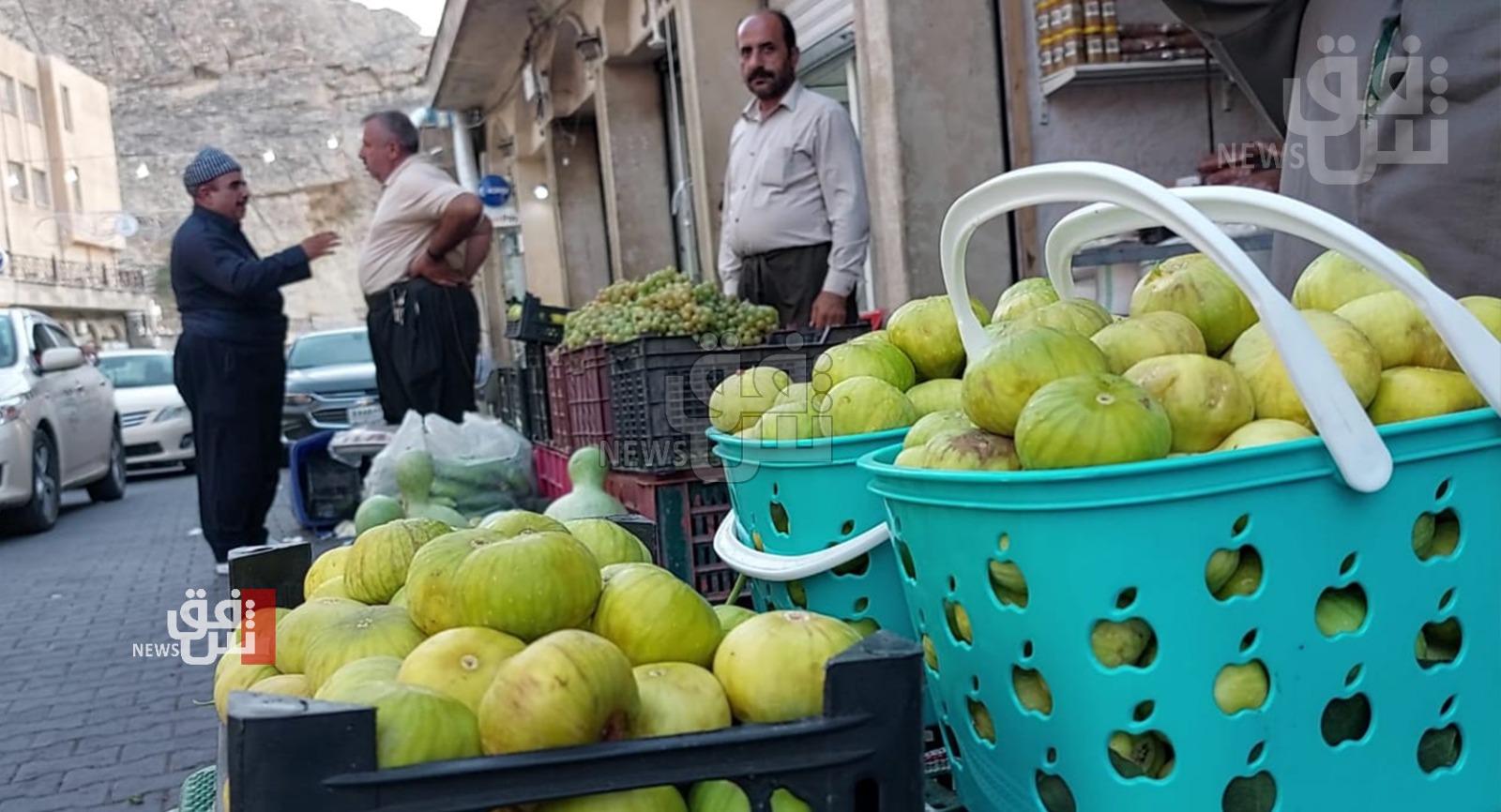 """مخاوف من تراجع إنتاج التين في """"عقرة"""" رغم تسويقه لمحافظات العراق"""