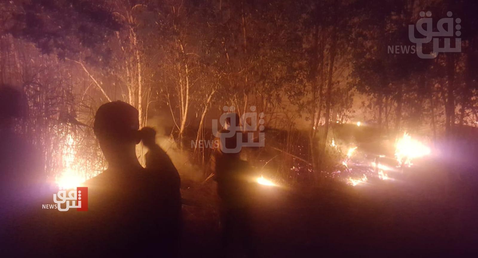 صور .. نشوب حريق كبير في حديقة عامة جنوبي ذي قار