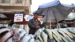 Why did fish leave Iraqis' meals?