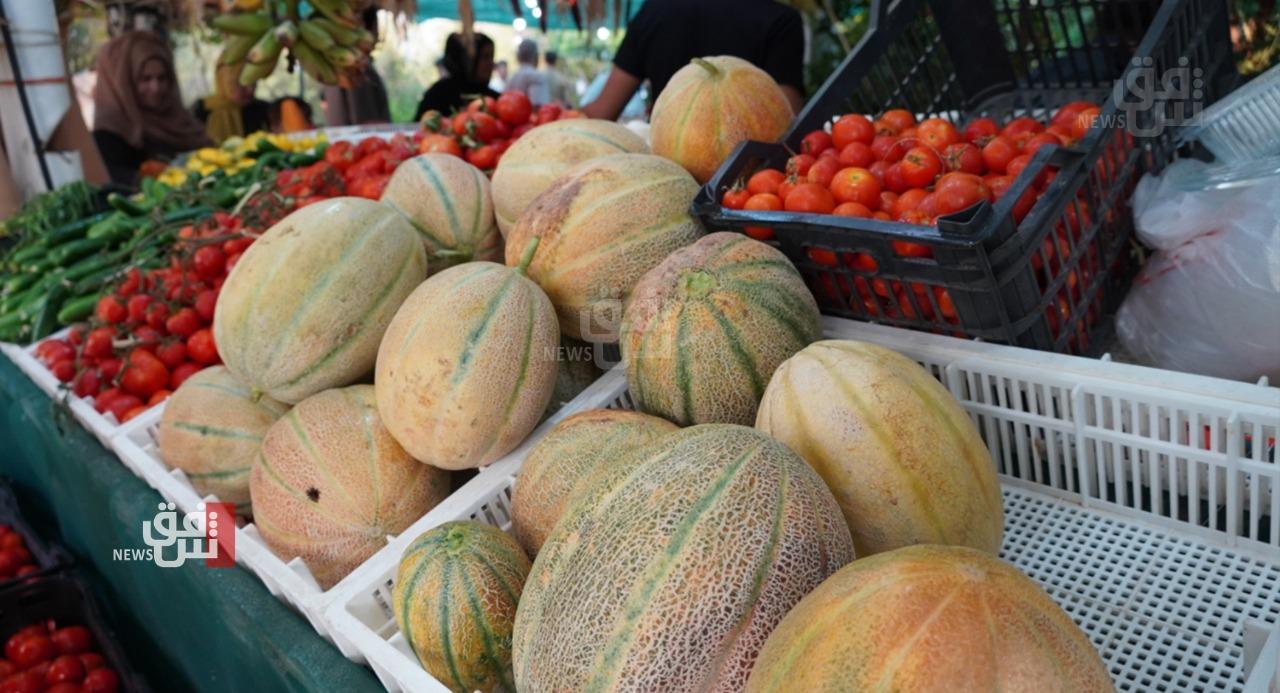 ثمار بيد المستهلك مباشرة.. مزراع يبتدع آلية جديدة لبيع محصوله (صور)