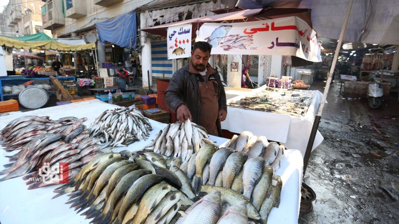 الأسماك.. اللحم الأبيض المحبوب يغادر موائد العراقيين