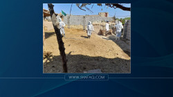 """تسجيل إصابة جديدة بمرض """"الحمى النزفية"""" جنوبي العراق"""