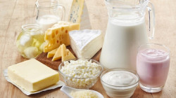 بەرهەمەیل شیر مەقیەتیمان لە بیماریەیلە کەێد