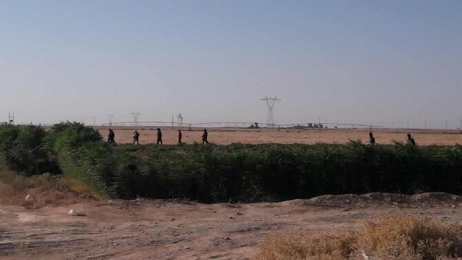 القوات الامنية تقتل 4 عناصر من داعش وتصيب اخرين بعملية في سامراء