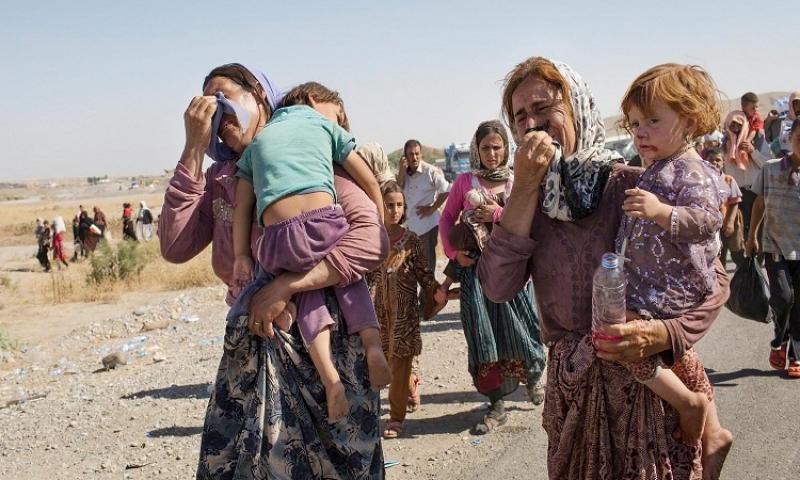 احصائية جديدة عن اعداد المختطفين والناجين الايزيديين من قبضة داعش