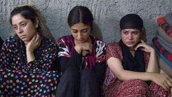 """مقاضاة الحكومة الألمانية بسبب """"جرائم حرب"""" في العراق"""