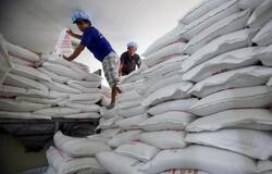 العراق يطرح مناقصة عالمية لشراء 30 ألف طن من الارز