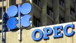 """أوبك.. تفاؤل """"حذر"""" حيال تعافي سوق النفط"""
