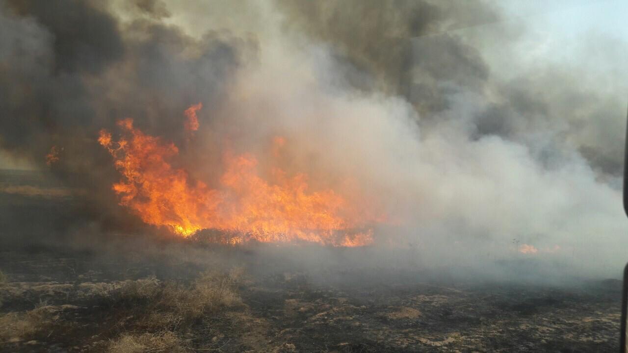 صور.. اخماد حريق كبير اتى على اكثر من 10 الاف دونم بكركوك