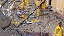 الزاملي: داعش يخطط لتهريب 10 الاف عنصر بينهم قادة من سجن جنوبي العراق