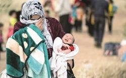 UN identifies 160 ISIS involved in killing Yezidis in Iraq